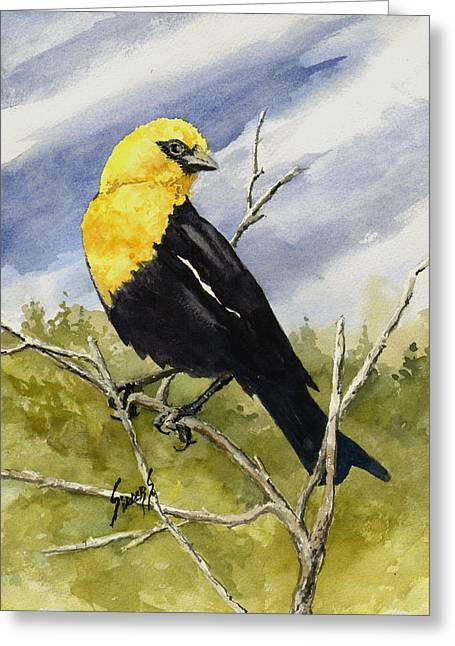 Yellow-headed Blackbird Greeting Card by Sam Sidders