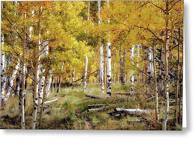 Yellow Heaven Greeting Card by Jim Hill
