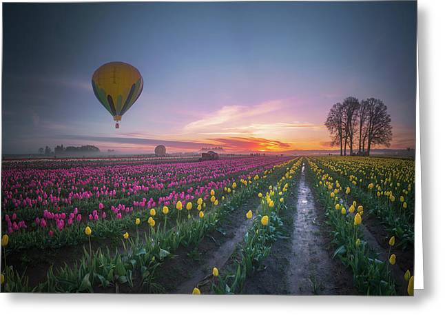 Greeting Card featuring the photograph Yellow Hot Air Balloon Over Tulip Field In The Morning Tranquili by William Lee