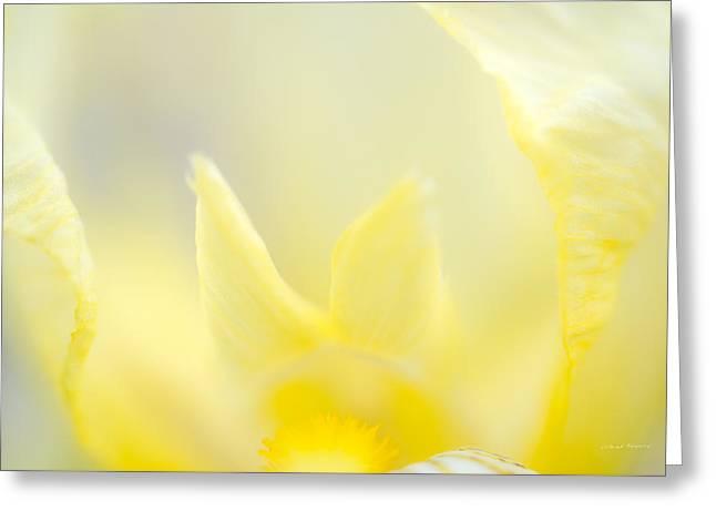 Yellow Iris 4 Greeting Card by Leland D Howard
