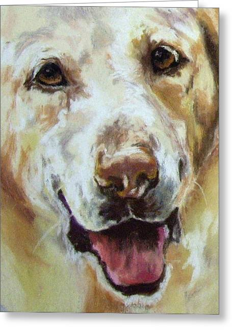 Yellow Lab Greeting Card by Debbie Anderson
