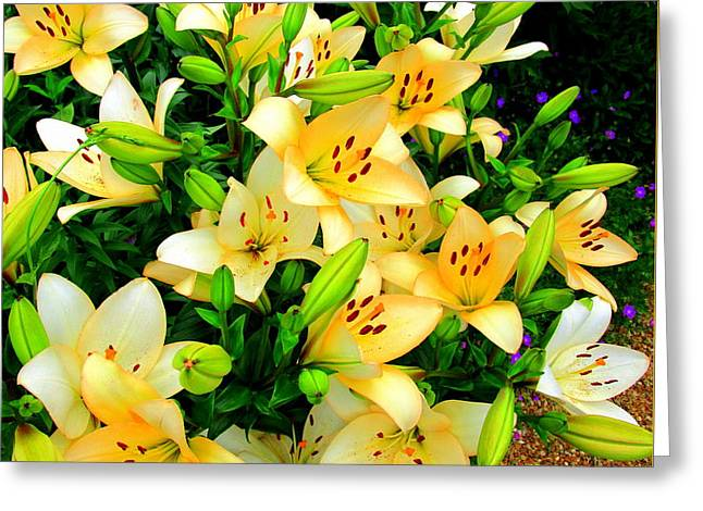 Greeting Card featuring the photograph Yellow Lilies 2 by Randall Weidner