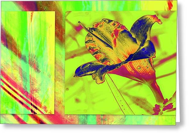 Greeting Card featuring the photograph Yellow Lilly Color Palette by Irma BACKELANT GALLERIES