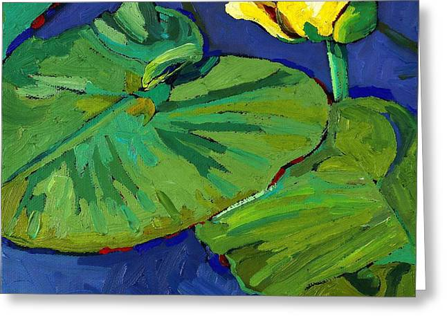 Yellow Lily Greeting Card by Phil Chadwick