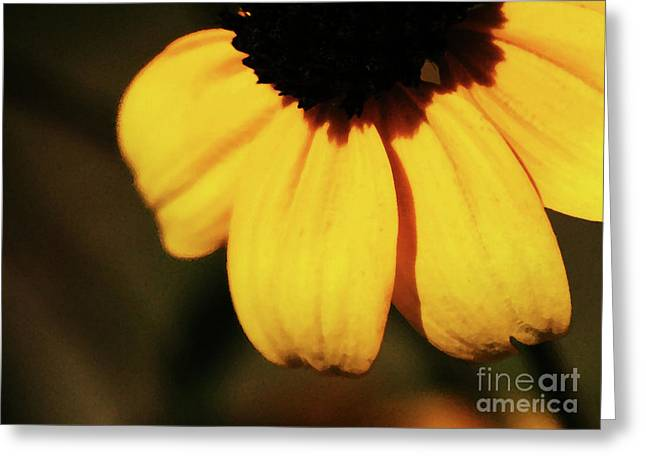 Yellow Greeting Card by Linda Shafer