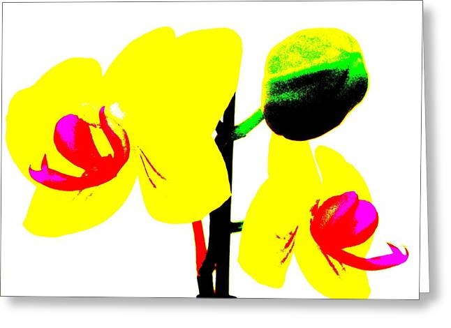Yellow Orchids Abstract Greeting Card by Beth Akerman