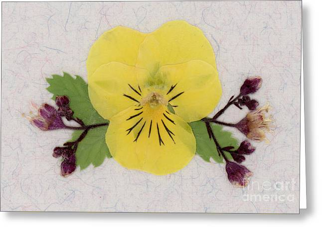 Yellow Pansy And Coral Bells Pressed Flowers Greeting Card
