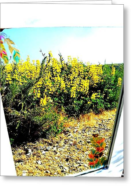 Yellow Reflection Greeting Card