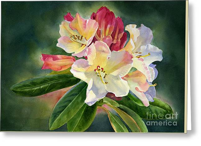 Yellow Rhododendron Dark Background Greeting Card by Sharon Freeman