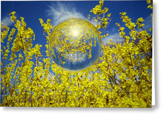 Greeting Card featuring the photograph Yellow by Robert Geary