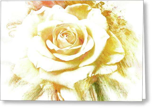 Greeting Card featuring the photograph yellow Rose by Athala Carole Bruckner