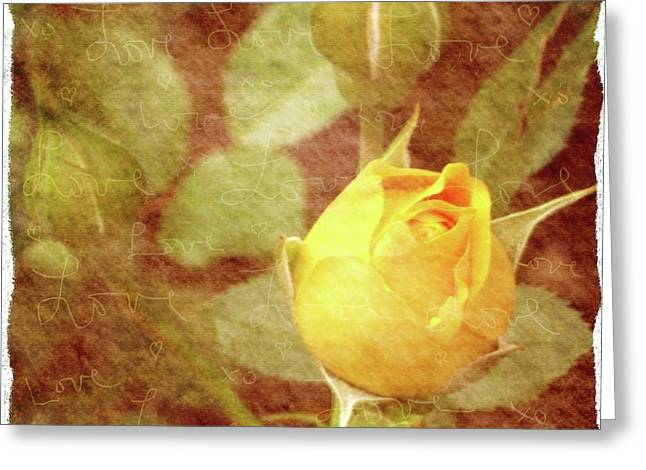 Yellow Rose Of Love Greeting Card