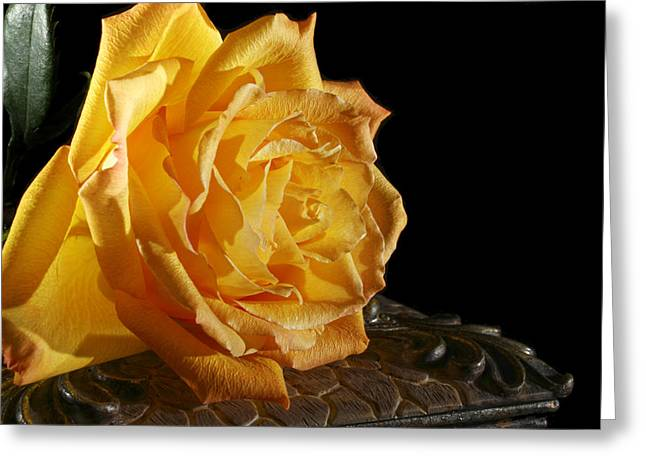 Yellow Rose Greeting Card by Robert Och