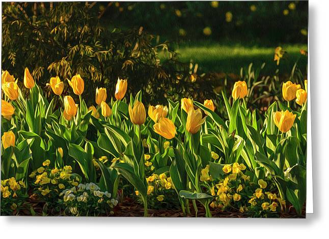 Yellow Spring Fever Greeting Card
