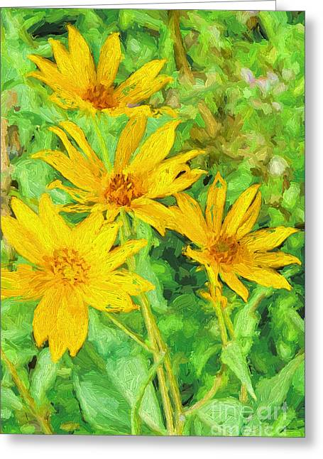 Yellow Summer Wildflowers I Greeting Card