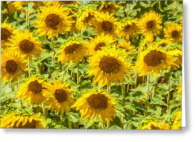 Kitchen Photos Paintings Greeting Cards - Yellow Sunflowers Greeting Card by David Letts
