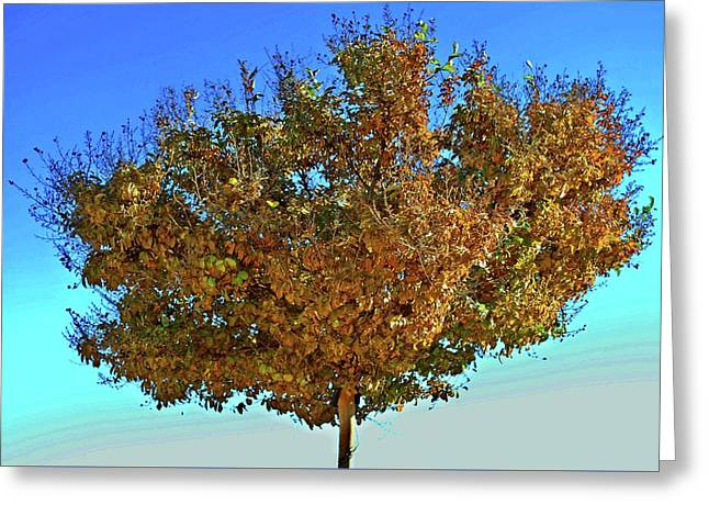 Yellow Tree Blue Sky Greeting Card