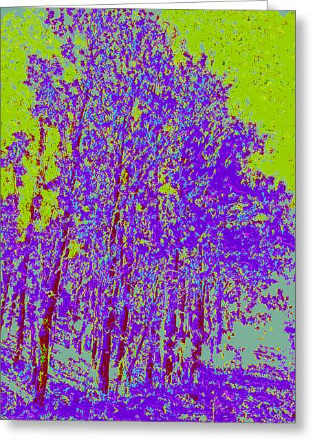 Yellow Trees D4 Greeting Card by Modified Image