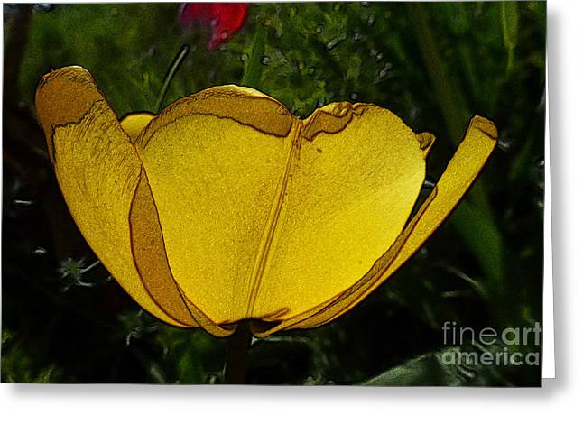 Yellow Tulip 2 Greeting Card
