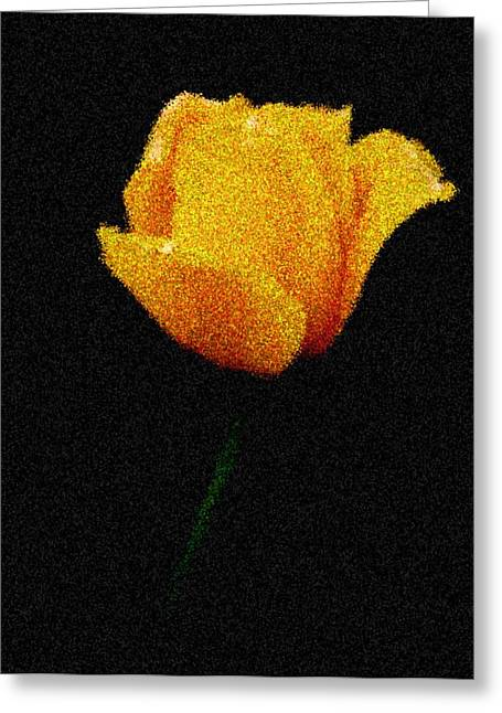 Yellow Tulip Greeting Card by Ralph Liebstein