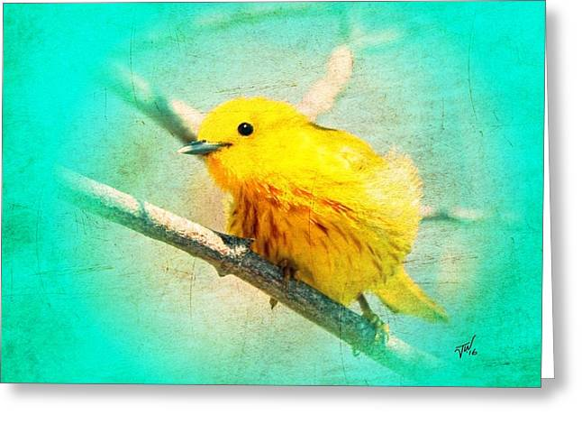 Greeting Card featuring the photograph Yellow Warbler by John Wills
