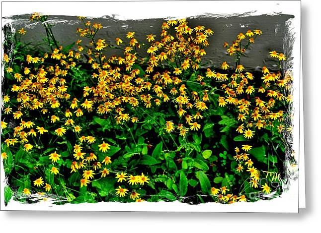 Yellow Wildflowers Greeting Card by Marsha Heiken