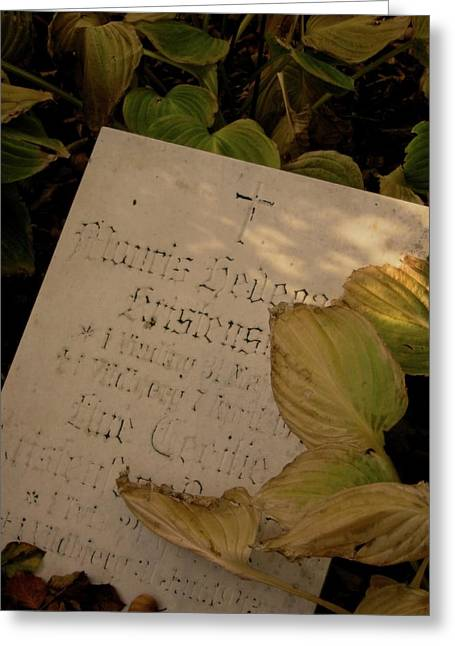 Headstones Greeting Cards - Yellowed Pages Greeting Card by Odd Jeppesen