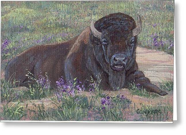 Yellowstone Bison Greeting Card by Peggy Conyers
