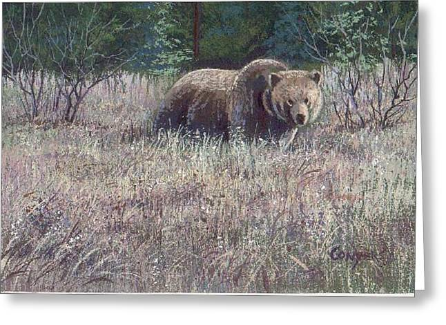 Yellowstone Grizzley Greeting Card by Peggy Conyers