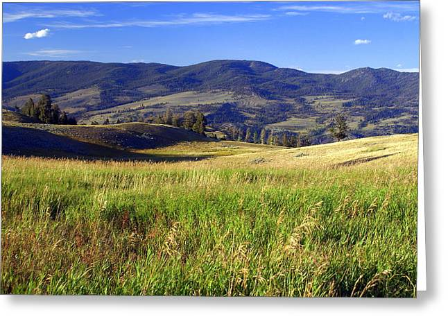 Yellowstone Landscape 3 Greeting Card by Marty Koch