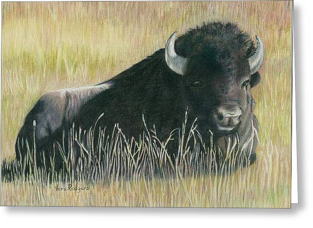 Yellowstone Loner Greeting Card by Vera Rodgers