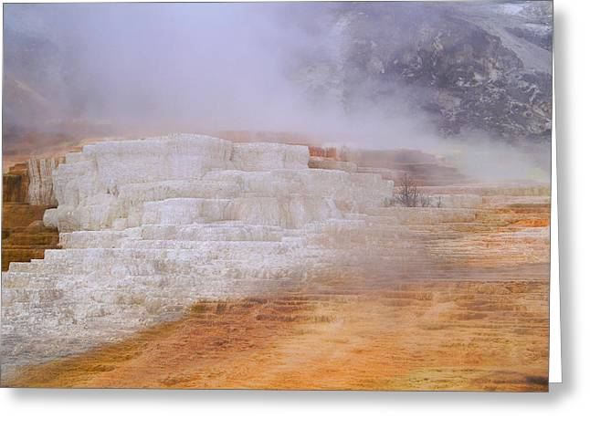 Greeting Card featuring the photograph Yellowstone Magic by Broderick Delaney