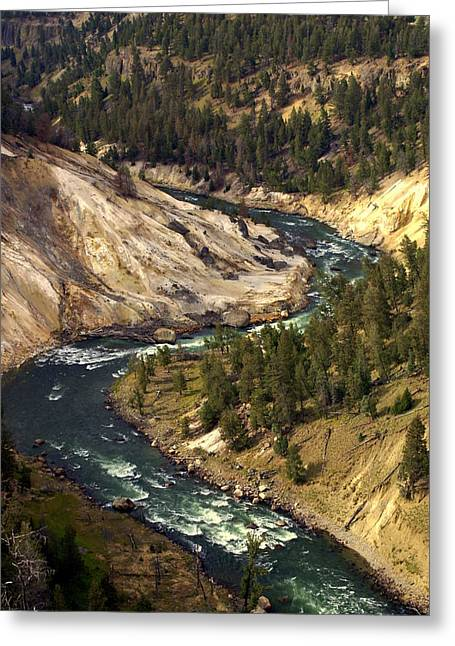 Yellowstone River Canyon Greeting Card by Marty Koch