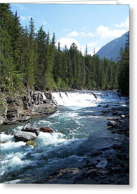 Yellowstone River Greeting Card by Constance Drescher