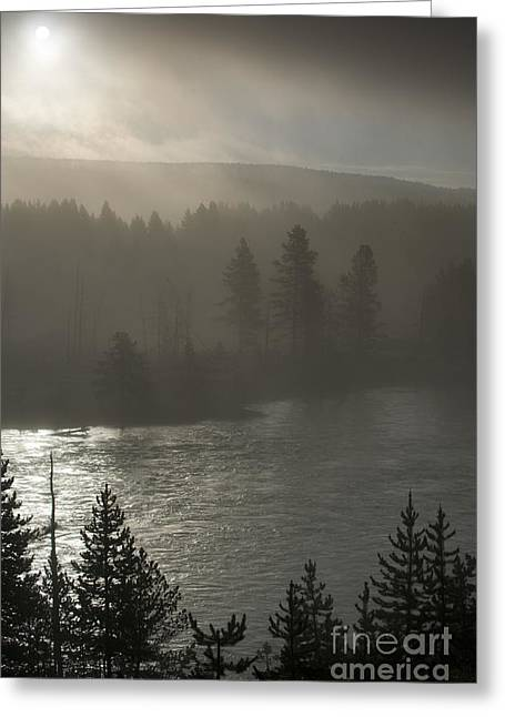 Yellowstone River Fog Greeting Card by Sandra Bronstein
