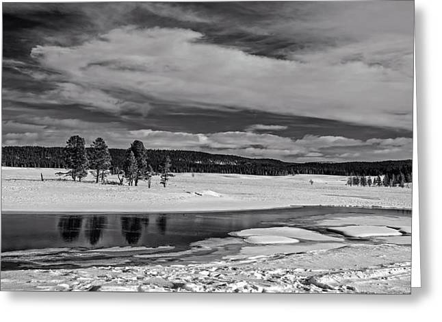 Yellowstone River Greeting Card by L O C