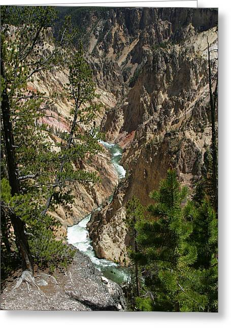 Yellowstone River Greeting Card by Linda Phelps