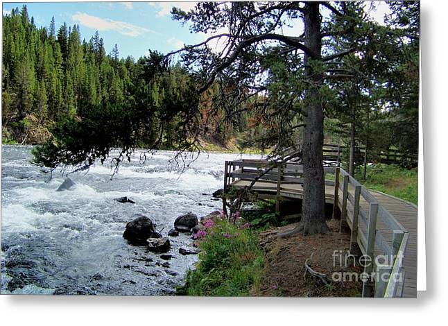 Greeting Card featuring the photograph Yellowstone River Walk by Charles Robinson
