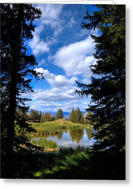 Yellowstone Sky Greeting Card by Patrick  Flynn