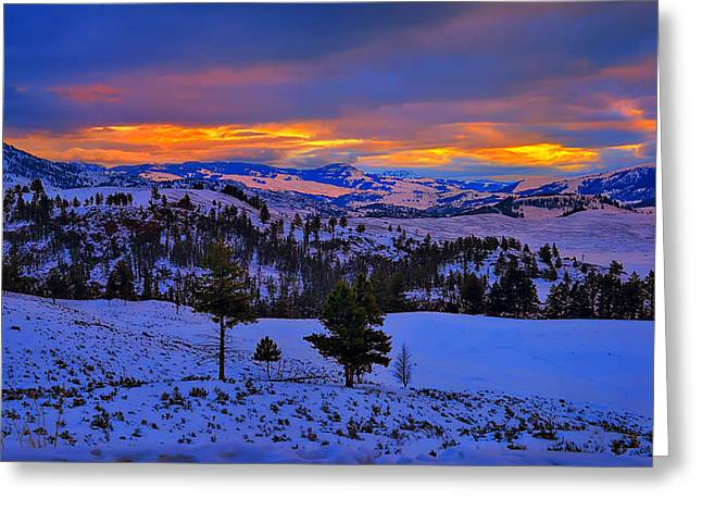 Yellowstone Winter Morning Greeting Card by Greg Norrell