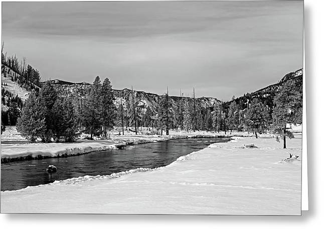 Yellowstone's Madison River Greeting Card by L O C