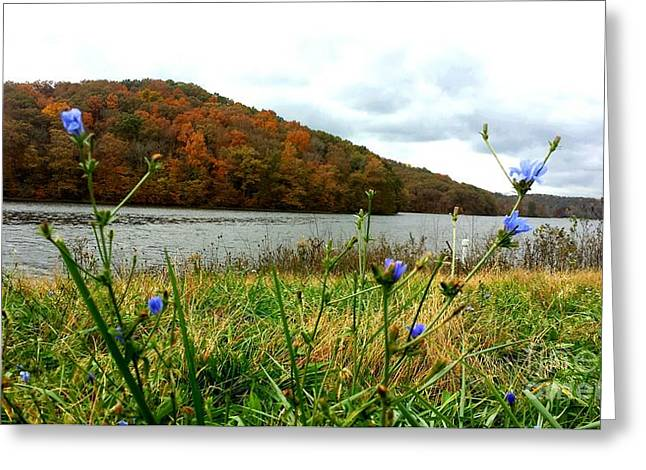 Yellowwood Lake, Southern Indiana Greeting Card by Scott D Van Osdol