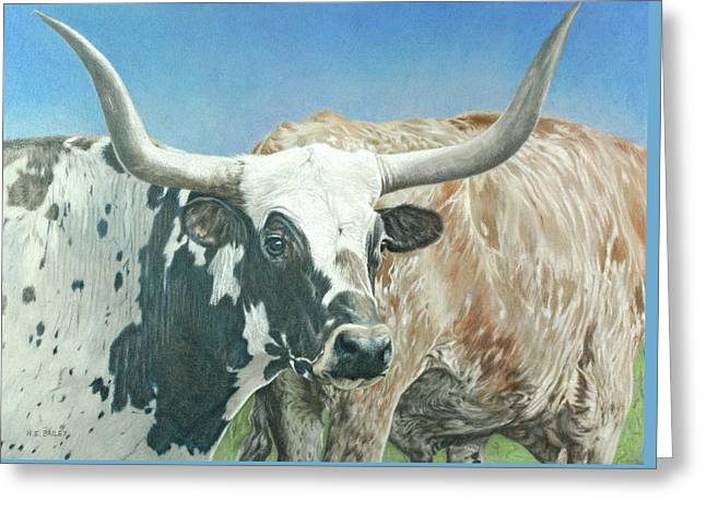 Yes, This Is Texas Greeting Card by Helen Bailey