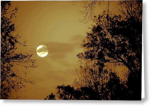 Vicky Browning Greeting Cards - Yesteryears Moon Greeting Card by DigiArt Diaries by Vicky B Fuller