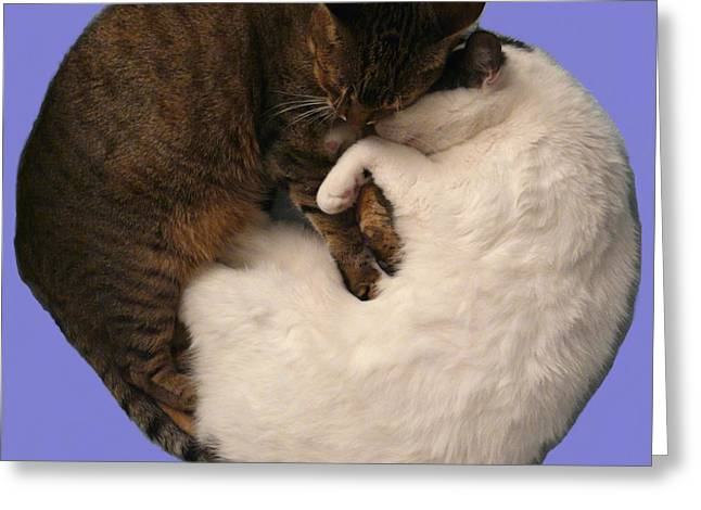 Yin And Yang Greeting Card by Valerie Ornstein