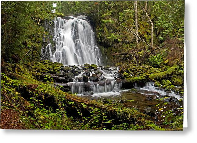 Yocum Falls. Oregon Greeting Card