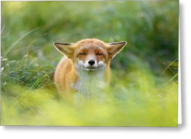 Yoda - Funny Fox II Greeting Card by Roeselien Raimond