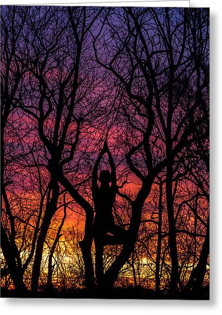 Yoga Tree Pose Sunrise One With The Trees Greeting Card by Terry DeLuco