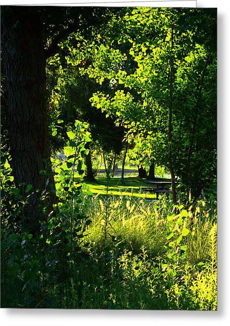 Yorba Greenery Greeting Card by Tim Marks