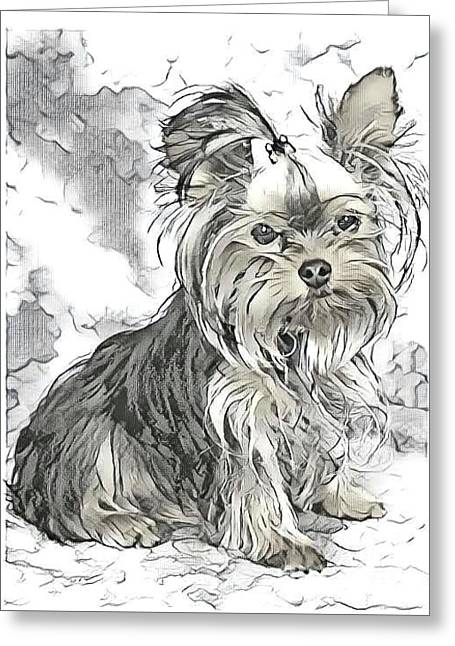 Yorkie Terrier Greeting Cards Page 16 Of 17 Fine Art America